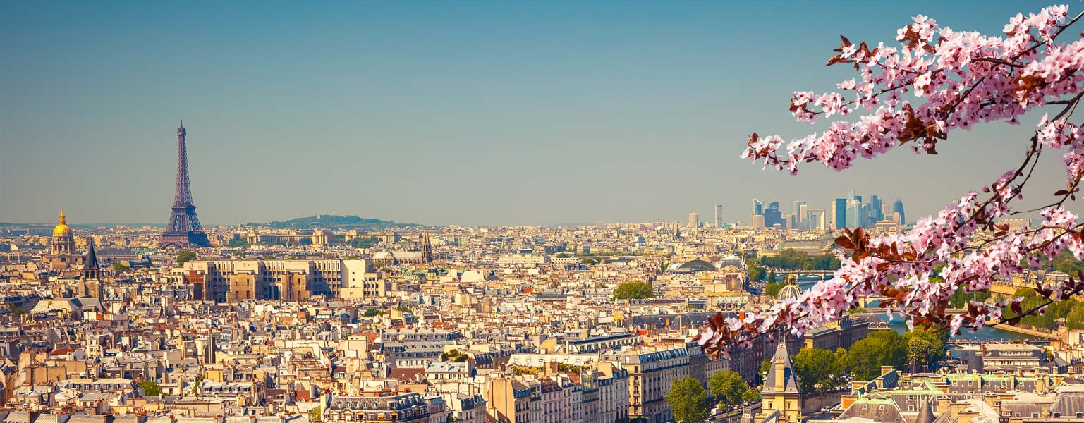 France Destination Guide