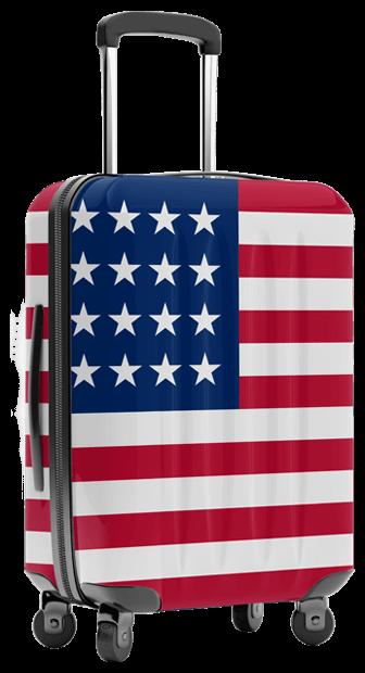 shipping luggage unaccompanied